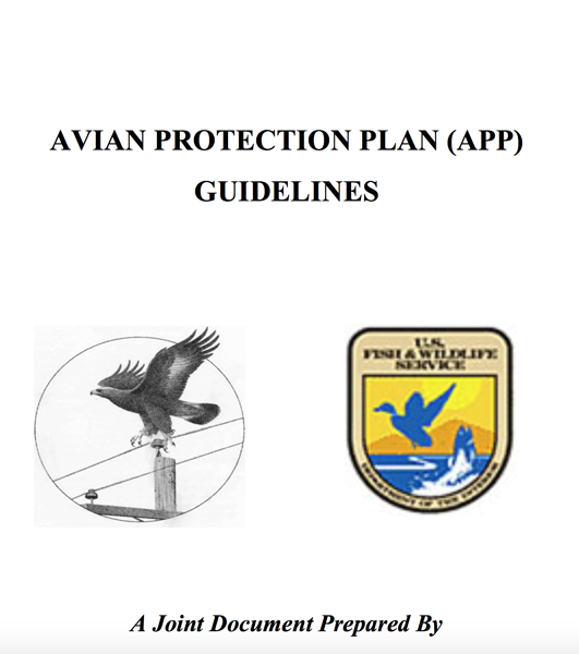 Raptor Protection Plans