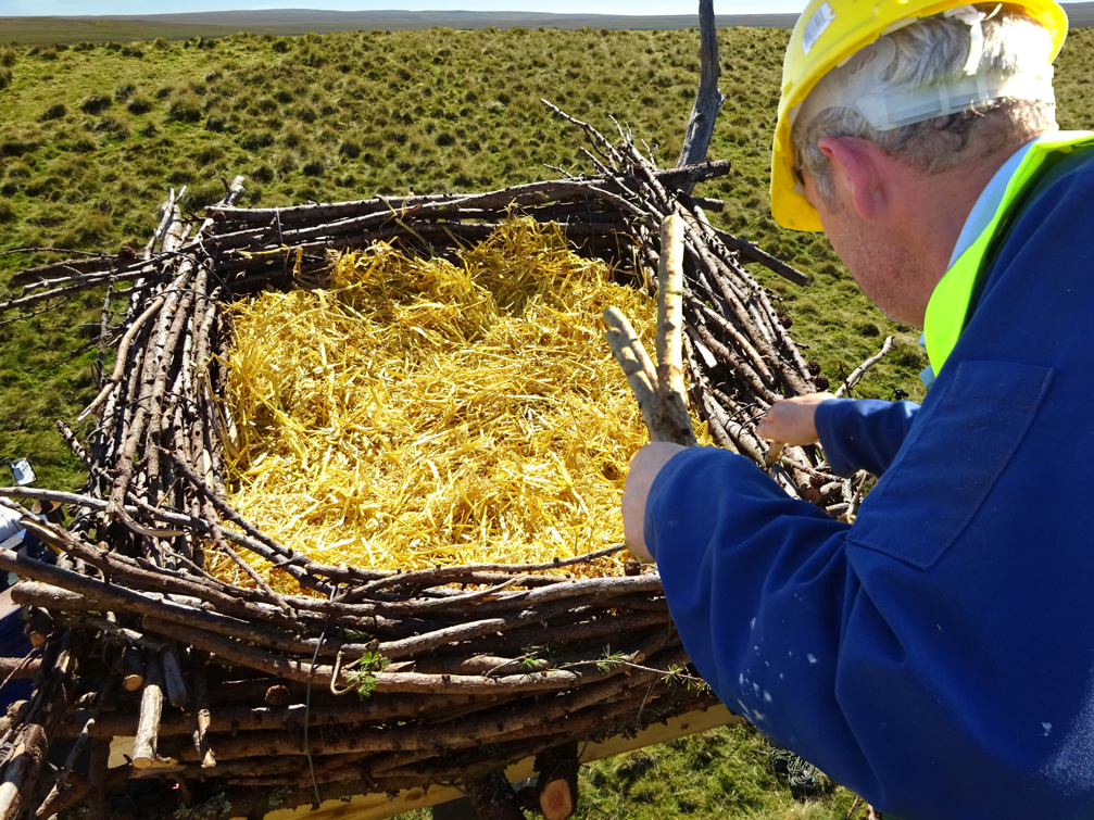 Finishing touches being added to one of the pole nests