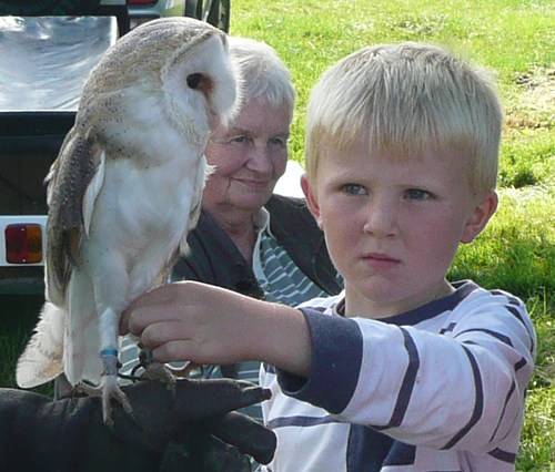 Image of Val Wilkinson with a boy holding a Barn Owl